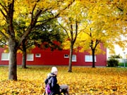 Young-woman-using-wheelchair-in-park-covered-in-fallen-autumn-leaves