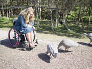 Young-woman-using-wheelchair-visiting-wildlife-sanctuary