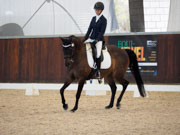 Boneo-Park,-Melbourne,-Australia.-18-October,-2017.-Equestrian-Australia-Para-Equestrian-Grade-4-Individual-Competition.-Janevelyn-Tsunami-ridden-by-Sarah-Sherwood